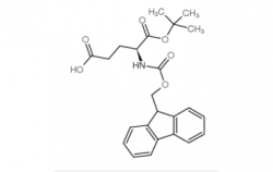 Fmoc-Glu-OtBu CAS号:84793-07-7
