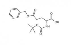 Boc-D-Glu-OBzl CAS号:34404-30-3