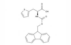 3-L-Ala(2-thienyl)-OH  CAS No.: 22951-96-8