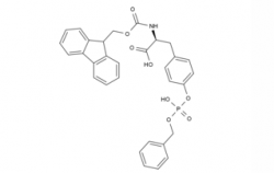 Fmoc-Tyr(HPO3Bzl)-OH CAS No.: 191348-16-0