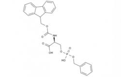 Fmoc-Ser(HPO3Bzl)-OH  CAS号:158171-14-3