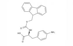 Fmoc-Phe(4-NH2)-OH