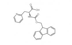 Fmoc-3-(2-Pyridyl)-Alanine CAS No.: 185379-40-2