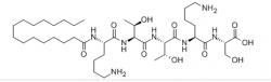 北京Palmitoyl Pentapeptide