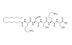 Palmitoyl Pentapeptide